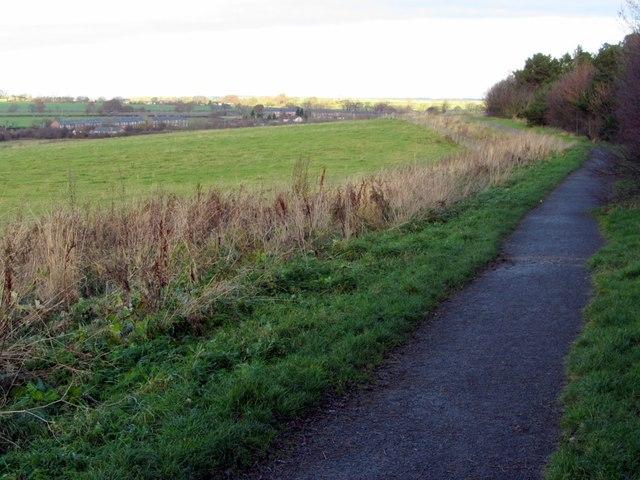 Footpath north of North Walbottle Road