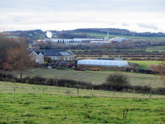Fell House Farm from the east