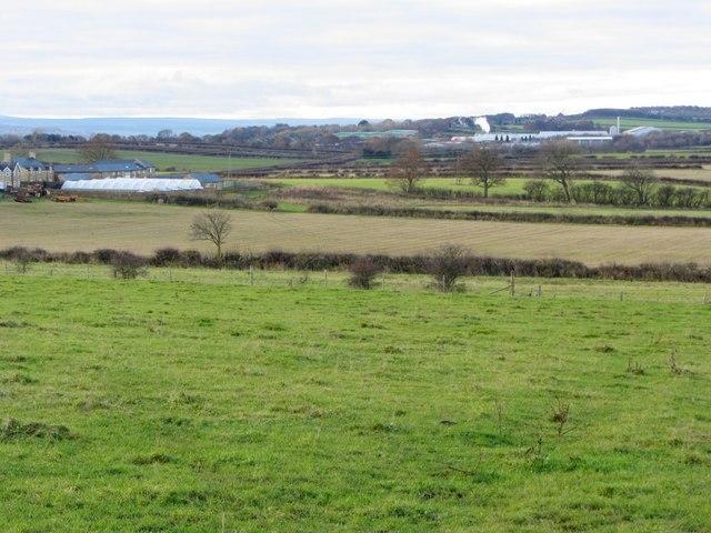 Farmland north of North Walbottle