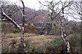 NG7932 : Bridge through the trees by Richard Dorrell