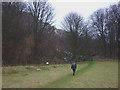 NU1533 : Footpath below Spindlestone Heughs by Karl and Ali
