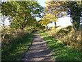 SJ2779 : The Wirral Way near Backwood Hall by Raymond Knapman