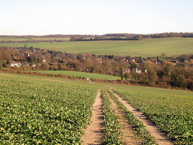 Footpath from Eagle Heights to Eynsford