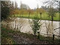 SP2965 : River Avon by Emscote Gardens, Warwick 2014, January 4, 12:15 by Robin Stott