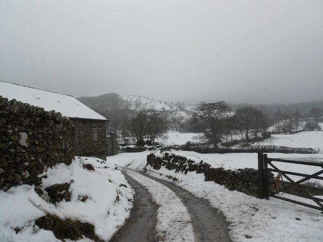 Satterthwaite - snow scene