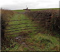 SO4106 : Wonky field gate near Brooks Holdings south of Raglan by Jaggery