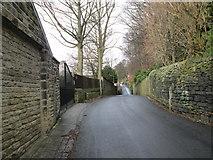 SE0724 : Trimmingham Lane - viewed from Plane Tree Nest Lane by Betty Longbottom