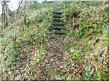 SE0721 : Steps on Elland FP42 (SE part) by Humphrey Bolton