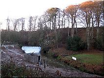 SJ8382 : Quarry Bank Mill: mill dam by Stephen Craven