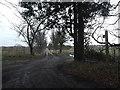 TM4274 : Footpath to New Farm & Blackheath by Adrian Cable