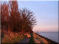 TA0325 : A sunset walk by Stephen Craven