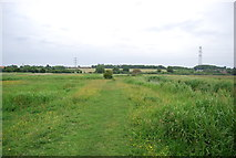 TG1808 : Yare Valley Walk, Bowthorpe Marshes by N Chadwick