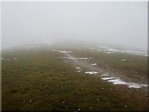 NY3418 : Path towards the summit of Sybarrow Dodd by Graham Robson