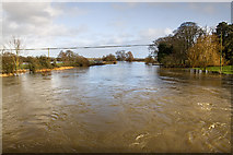 ST9102 : Jan 2014: flooding at Crawford Bridge, Spetisbury (3) by Mike Searle