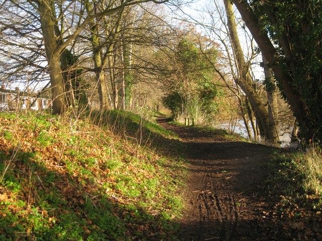 Riverside Walk by Emscote Gardens, Warwick 2014, January 7