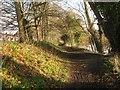 SP2965 : Riverside Walk by Emscote Gardens, Warwick 2014, January 7 by Robin Stott