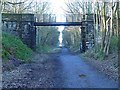 NZ2153 : Consett and Sunderland Railway Path at Beamish by Oliver Dixon