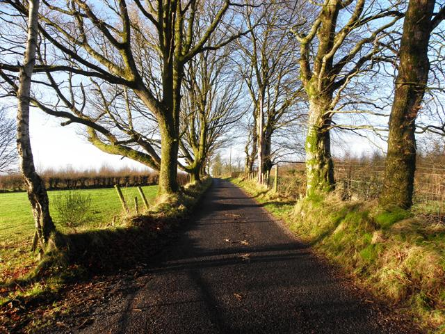 Gap Road, Mullaslin