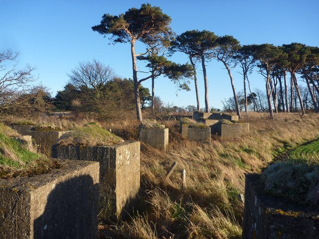 Coastal East Lothian : Anti-tank Blocks Near Hedderwick Hill