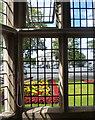 SJ3384 : Flowers through the Window by Des Blenkinsopp