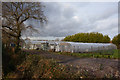 SU4919 : Glasshouses and polytunnels at Fieldfare Nursery by Peter Facey