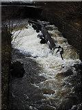 NS5574 : Allander Water by Thomas Nugent