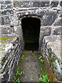 SX2084 : Saint Clether's Well by Chris Gunns