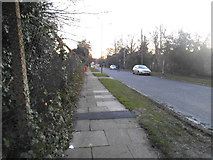 TQ2087 : Birchen Grove, Kingsbury by David Howard