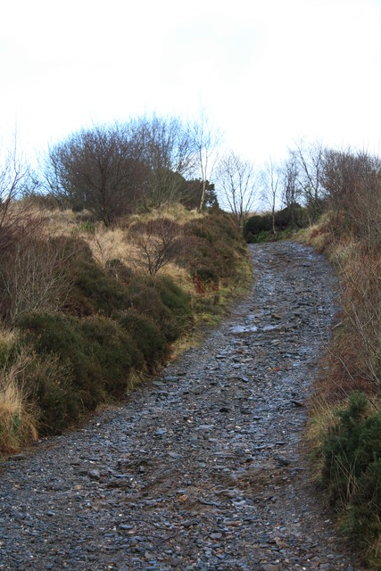 Hillside track near Balliemore