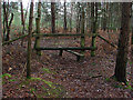 SU8362 : Stile, Edgbarrow Woods by Alan Hunt