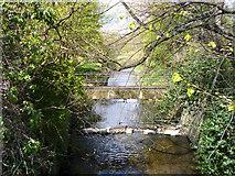 TQ2172 : Beverley Brook enters Richmond Park by Robin Webster