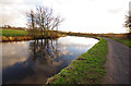 SD4764 : Lancaster Canal, near Beaumont by Ian Taylor