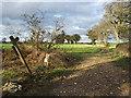 TM2142 : Footpath to Purdis Hall & Sandlings Walk by Adrian Cable