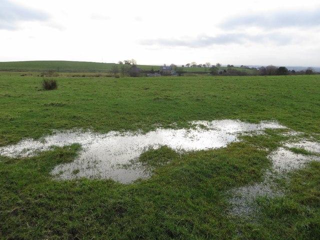 Standing water in an Affetside field