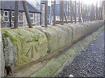 ST7565 : Mark among the railings by Neil Owen