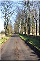 SP1020 : Country road into Notgrove by Philip Halling