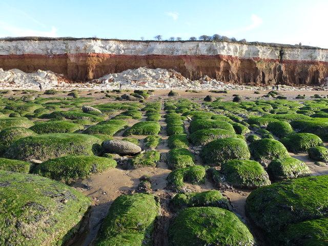 Wave-cut platform and Hunstanton cliffs