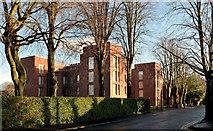 J3271 : Nos 36-38 Windsor Park, Belfast - 2014 (3) by Albert Bridge