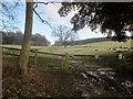SE3143 : Leeds Country Way by Derek Harper