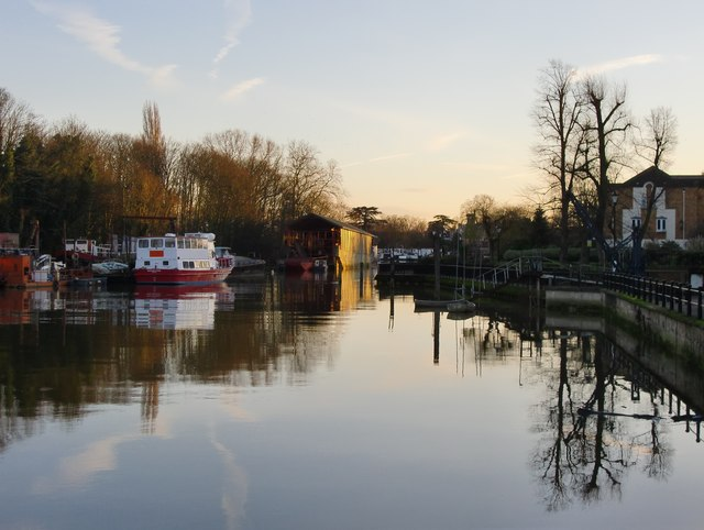 The Thames at Isleworth Ait: view upstream, January 2014