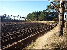 NT6378 : East Lothian Landscape : A Ploughed Field Near Hedderwick Hill by Richard West