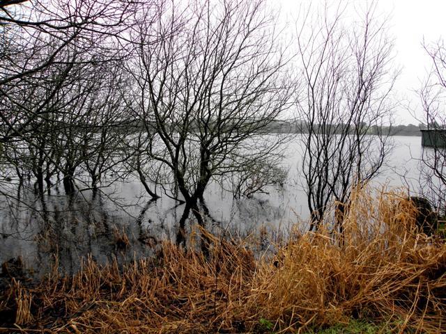 Lough, Loughmacrory