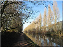 SJ7796 : Bridgewater Canal at Trafford Park by John Slater