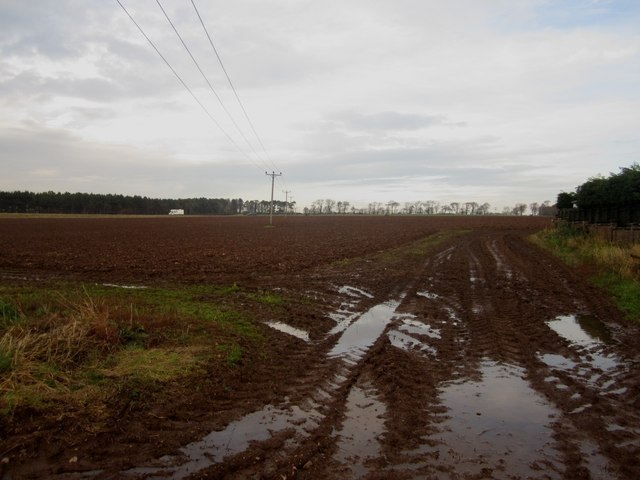 Ploughed field west of Ayton