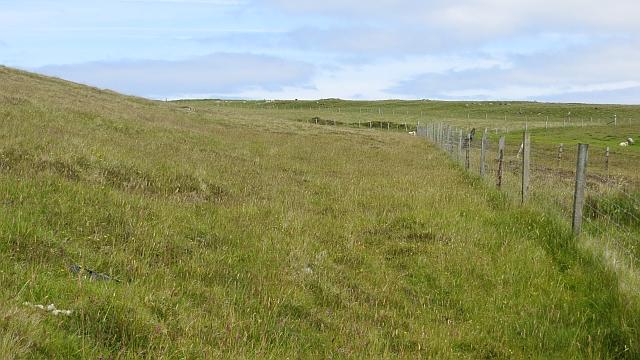 Fields, Rivs Dale