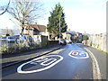 TQ4177 : Mascalls Road - new speed markings by Stephen Craven