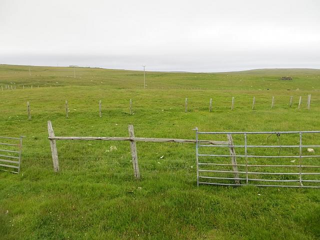 Fields, Aith Ness