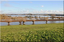 SO8832 : Flooding at Tewkesbury by Philip Halling