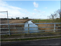 SU9201 : Aldingbourne Rife looking westwards from Shripney Lane by Shazz