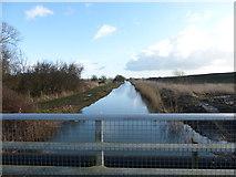 SU9201 : Aldingbourne Rife looking eastwards from Shripney Lane by Shazz